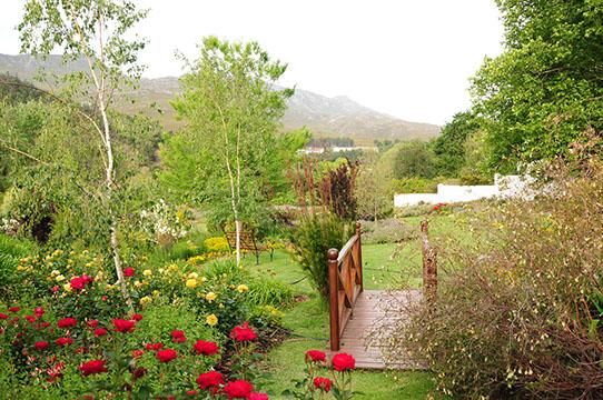 Elgin Open Gardens_Elgin Valley_Grabouw_Houw Hoek_Overberg_Western Cape_Houw Hoek Outspan_2